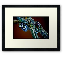 Sunlight upon my belly Framed Print
