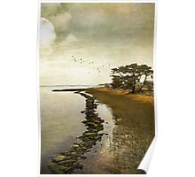 Calm at the waters edge Poster