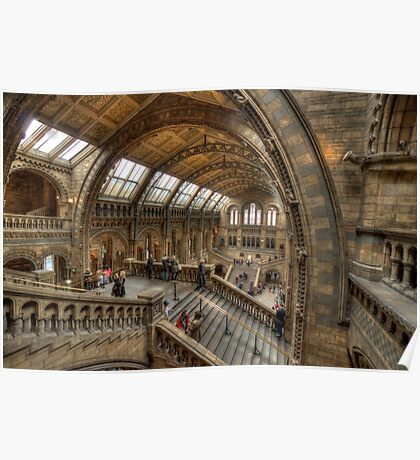 The Natural History Museum - London Poster