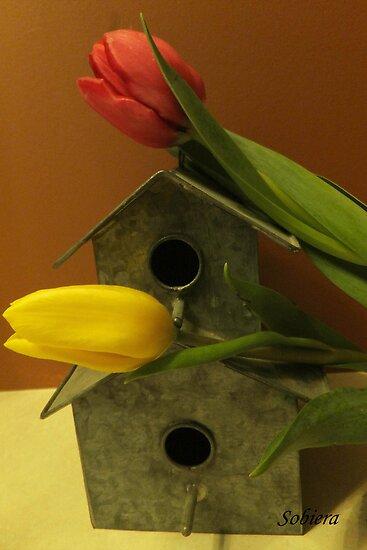 Ready for Spring by Rosemary Sobiera
