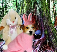 ❀◕‿◕❀I AM THE EASTER BUNNY,,NOW WHO IS THE IMPOSTOR?❀◕‿◕❀ by ✿✿ Bonita ✿✿ ђєℓℓσ