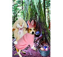 ❀◕‿◕❀I AM THE EASTER BUNNY,,NOW WHO IS THE IMPOSTOR?❀◕‿◕❀ Photographic Print