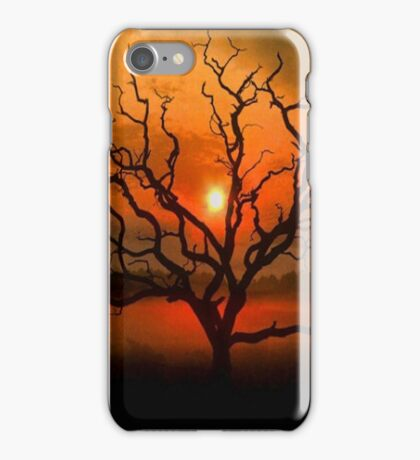 Beautiful Sunset Case iPhone Case/Skin