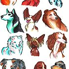 Brush Breeds Compilation Batch 1 by Alexa H.J.