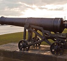 cannon on the walls of Collingwoods Monument at Tynemouth by David Patterson