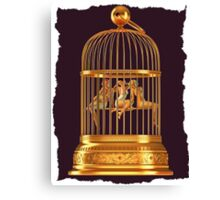 Bird Cage Canvas Print