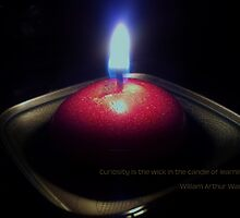 Curiosity is the wick in the candle of learning by Scott Mitchell