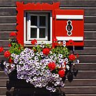 The little red & white window. by Lee d'Entremont