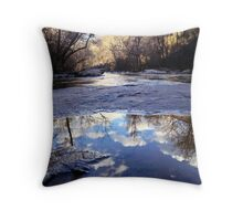 Upside Down Throw Pillow