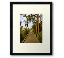 Wooden Path Framed Print