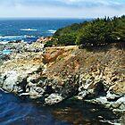 """Coves At The Ocean's Edge"" by Gail Jones"