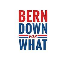 Bernie Sanders by ofelya