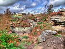 Brimham Rocks North Yorkshire - HDR by Colin  Williams Photography