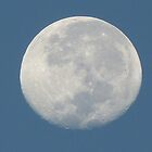BLUE MOON by thedove63
