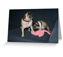 The Easter Bunny Didn't Leave Us Any Eggs!! Greeting Card