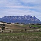 Mt Roland, Tasmania by Margaret  Hyde