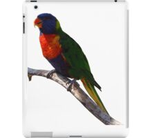 lorri bird iPad Case/Skin