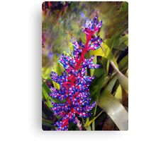 Transported to the tropics Canvas Print