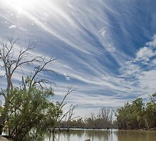Murrumbidgee river Maude road, Hay by outbacksnaps