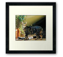 Cat Royalty Framed Print