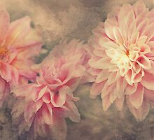 """Autumn Dahlia's"" by Rosehaven"