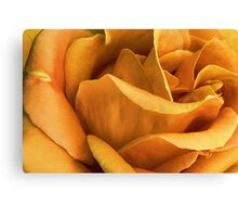 Perfect Imperfections .... Canvas Print