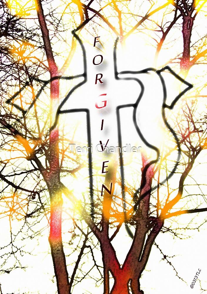 Forgiven (No Border) by Terri Chandler