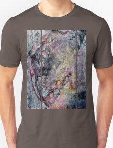 Peeling Back - the Layers of History T-Shirt