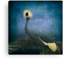 The Crowned Crane Canvas Print