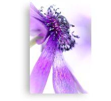 A Majestic Bend of the Purple Princess.. Canvas Print