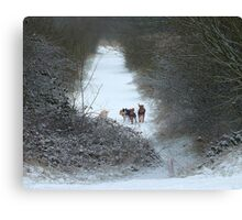 Dogs in Country Snow Scene Canvas Print