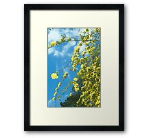 yellow 2 Framed Print
