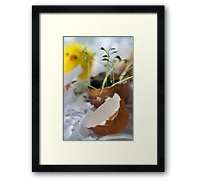 Hatched! Framed Print