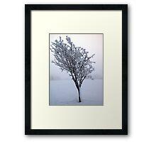 Frozen Tree, Northern Ireland Framed Print