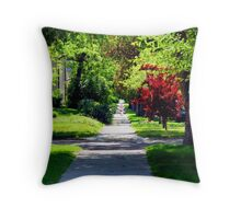 Follow Your Dreams-The Road is Endless Throw Pillow