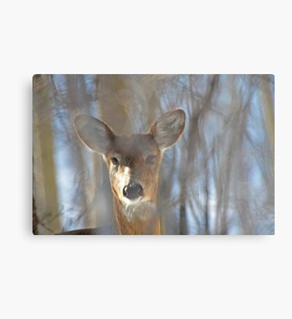 They Call Me Number 5 Metal Print