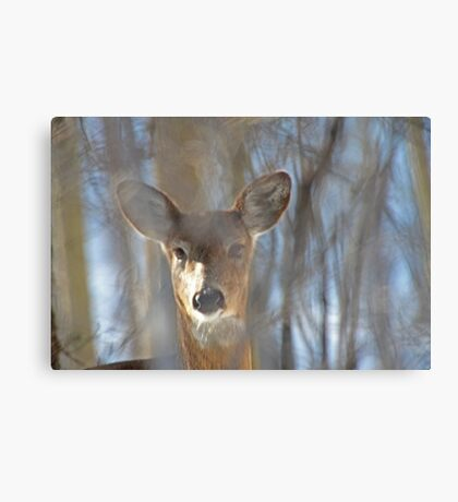 They Call Me Number 5 Canvas Print
