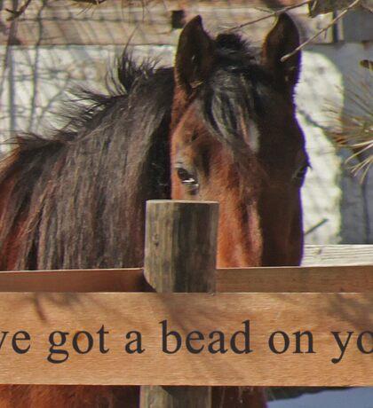 I've got a bead on you. Sticker