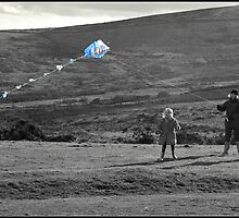 High Fliers by Beverley Barrett