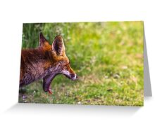 Yawn, Boring! Greeting Card