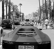 Lamborghini Aventador  by Brandon Moore