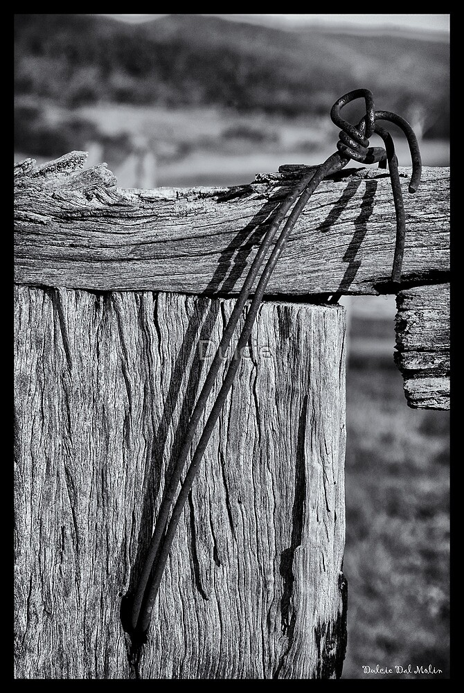 Post and Wire by Dulcie