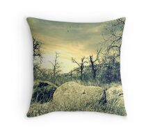 Boulder Protection Throw Pillow
