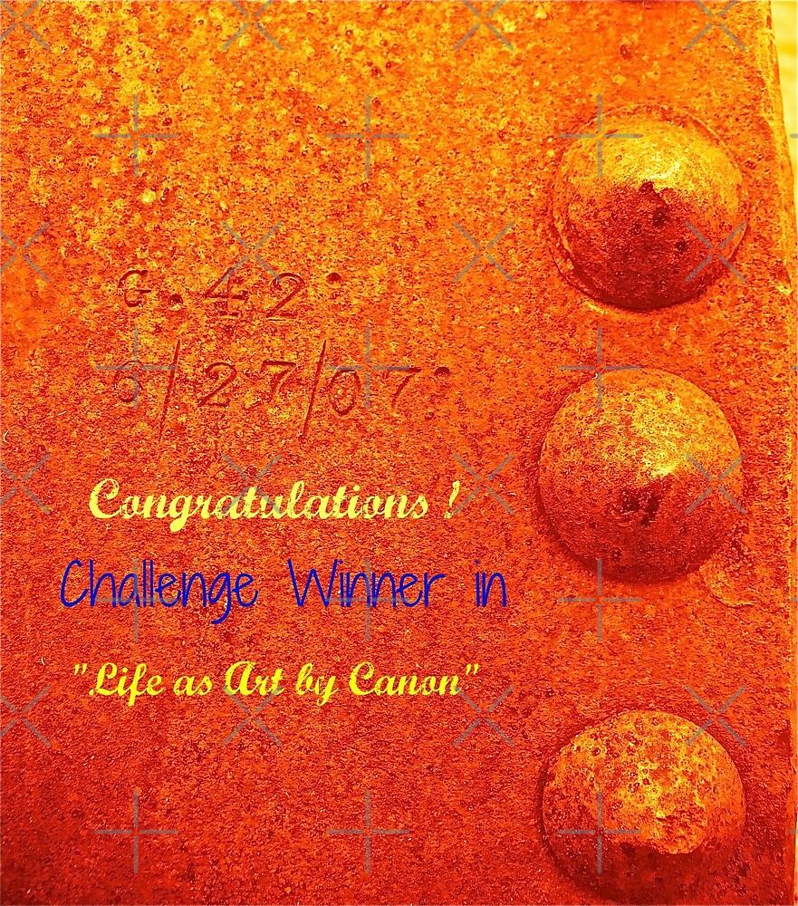 Challenge Banner by Linda Bianic