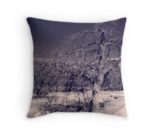Curved Road Throw Pillow
