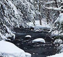 Winter Creek by mlaprade