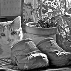 Mick and my sister's shoes by Carolyn Clark