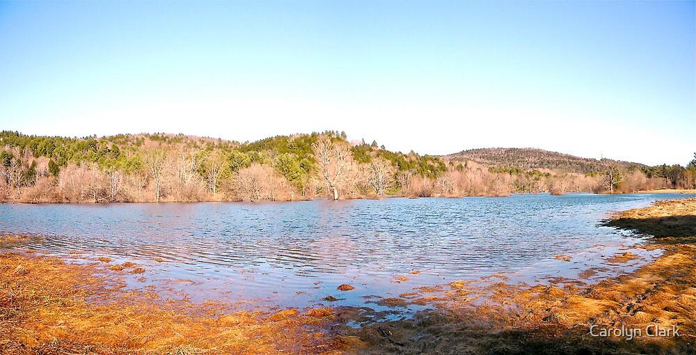 Spring flooding 2011  by Carolyn Clark