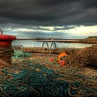 Oh Buoy! What a Lot of Ropes! by CharlotteMorse