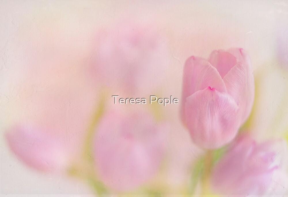 faintly tulips by Teresa Pople